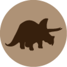 Tricerátopo